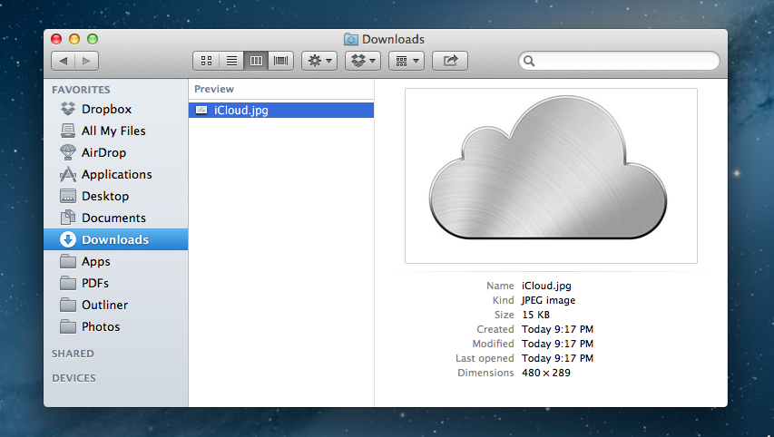 Mountain Lion's Finder